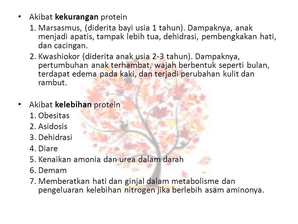 Akibat kekurangan protein 1.Marsasmus, (diderita bayi usia 1 tahun). Dampaknya, anak menjadi apatis, tampak lebih tua, dehidrasi, pembengkakan hati, d