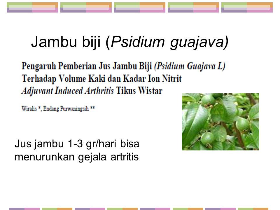 Jambu biji (Psidium guajava) Jus jambu 1-3 gr/hari bisa menurunkan gejala artritis