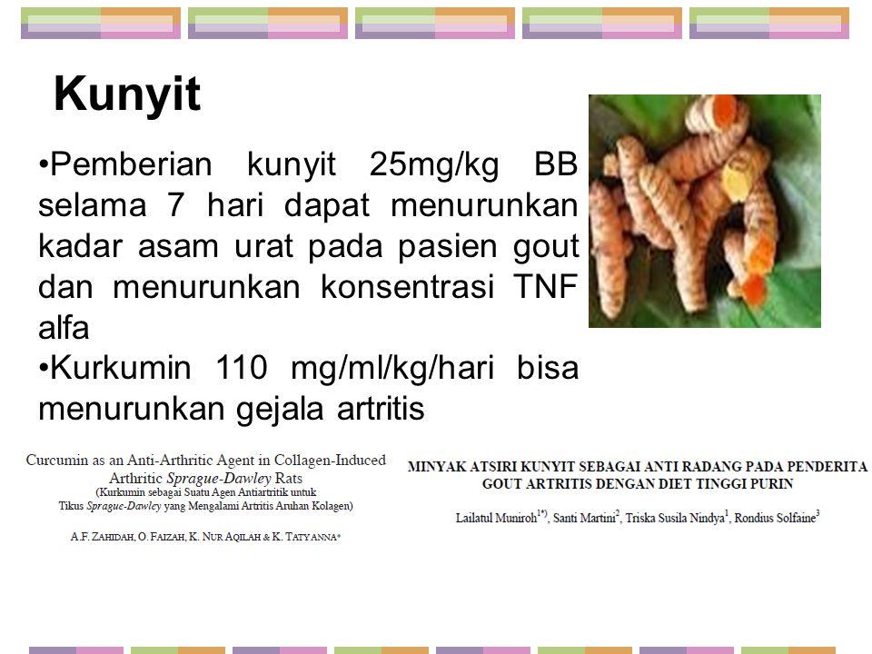 Kunyit Pemberian kunyit 25mg/kg BB selama 7 hari dapat menurunkan kadar asam urat pada pasien gout dan menurunkan konsentrasi TNF alfa Kurkumin 110 mg