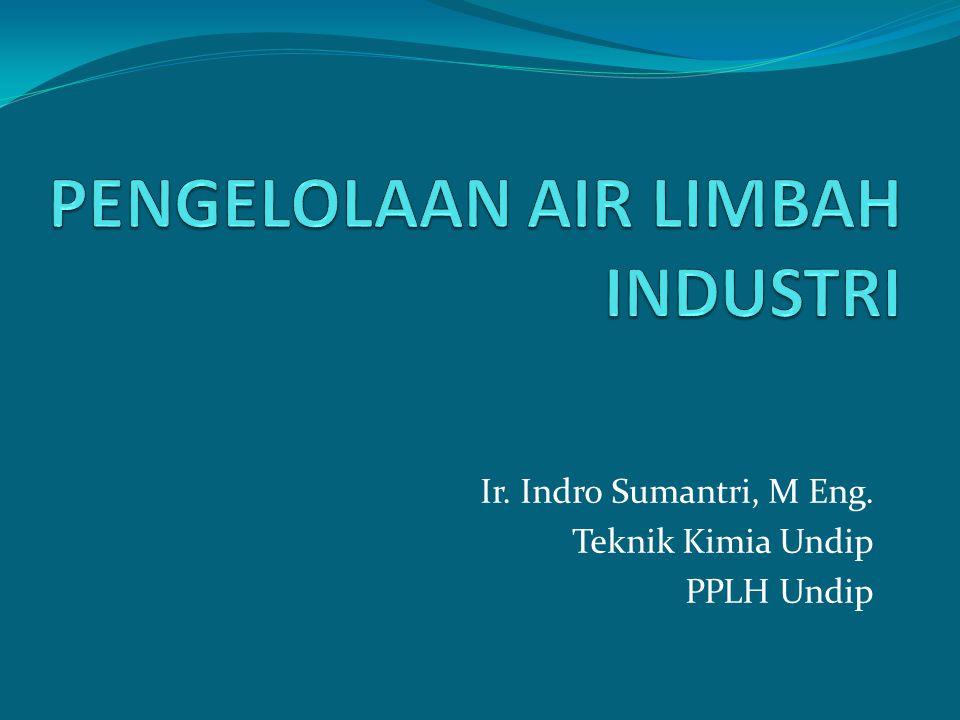 Ir. Indro Sumantri, M Eng. Teknik Kimia Undip PPLH Undip