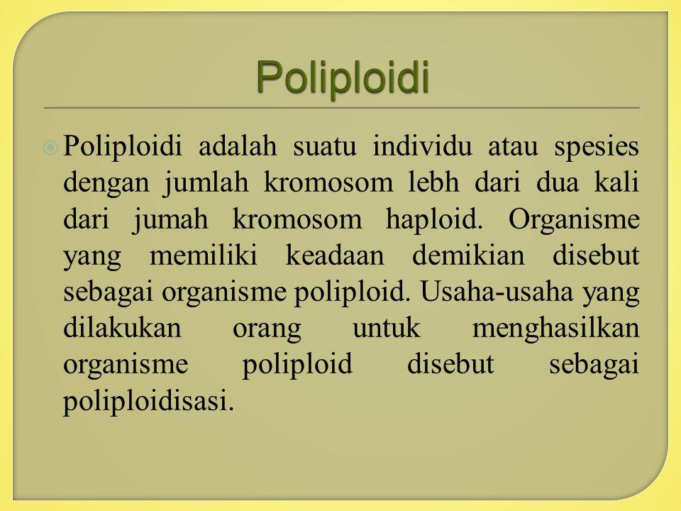  Poliploidi adalah suatu individu atau spesies dengan jumlah kromosom lebh dari dua kali dari jumah kromosom haploid. Organisme yang memiliki keadaan