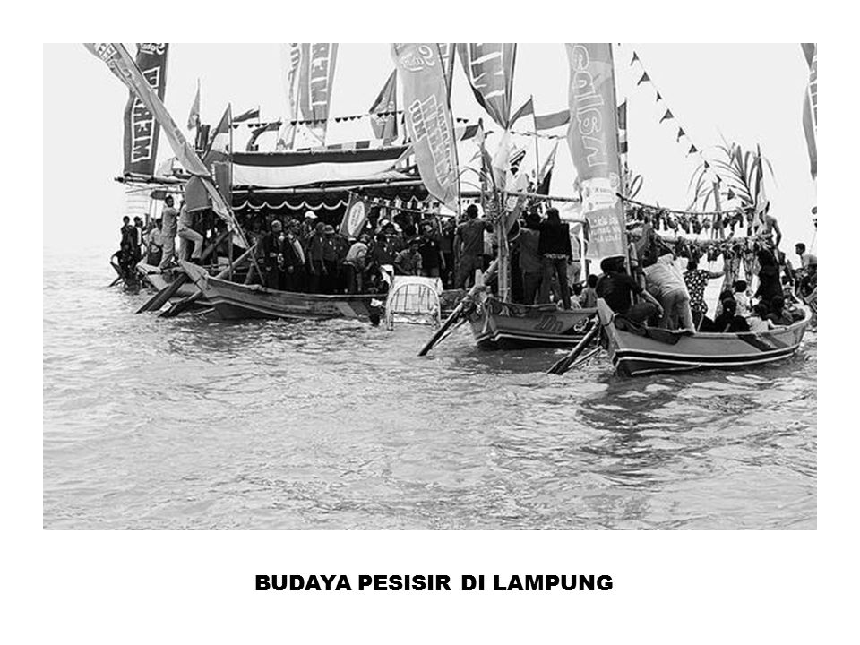 BUDAYA PESISIR DI LAMPUNG