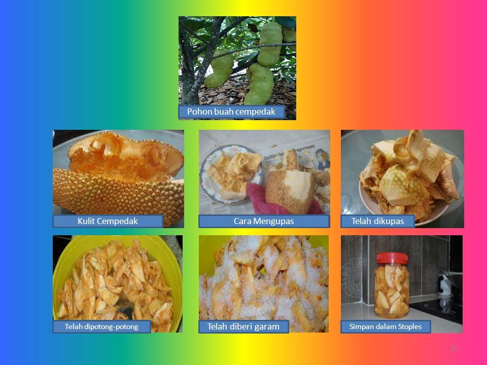 25 Cara MengupasKulit CempedakTelah dikupas Telah dipotong-potong Telah diberi garam Simpan dalam Stoples Pohon buah cempedak