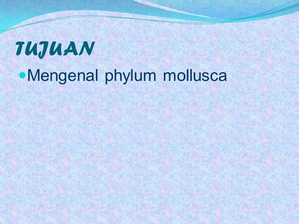 Molusca dikenal sebagai hewan yang mempunyai tubuh lunak yang telah dikenal dari waktu yang termuda yang mempunyai bentuk yang beragam.