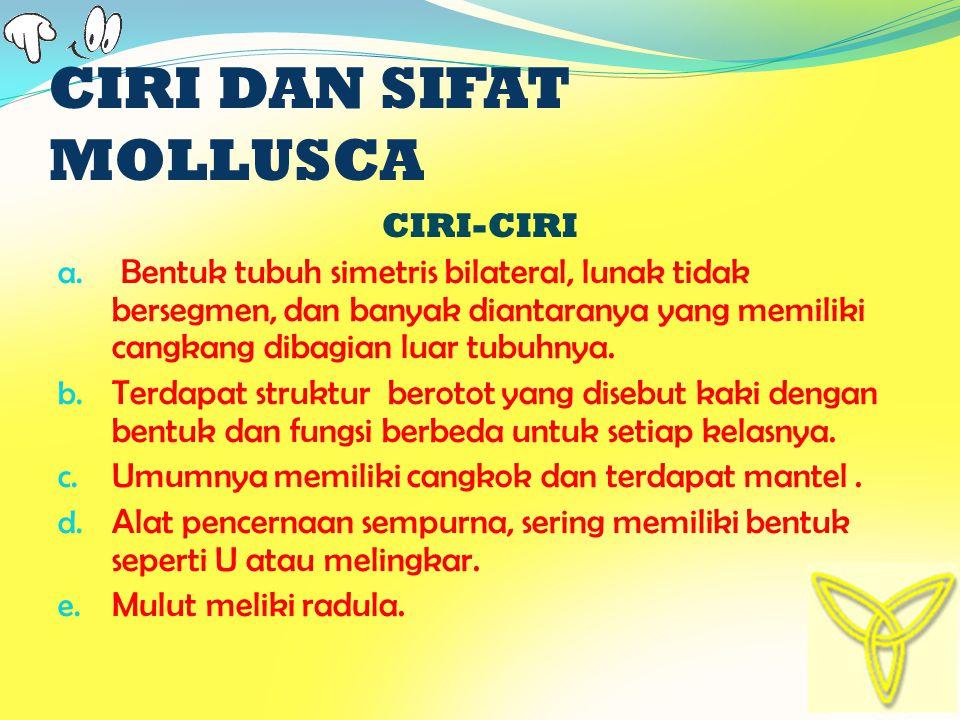 CIRI DAN SIFAT MOLLUSCA CIRI-CIRI a.