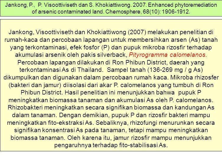 Jankong, Visoottiviseth dan Khokiattiwong (2007) melakukan penelitian di rumah-kaca dan percobaan lapangan untuk membersihkan arsen (As) tanah yang te