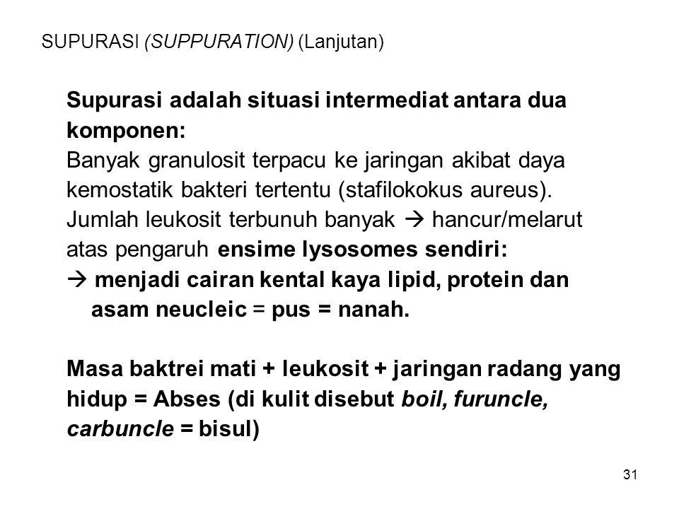 31 SUPURASI (SUPPURATION) (Lanjutan) Supurasi adalah situasi intermediat antara dua komponen: Banyak granulosit terpacu ke jaringan akibat daya kemost