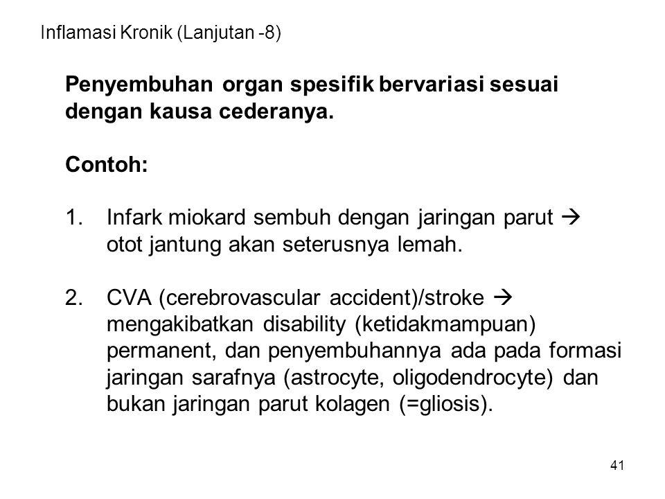 41 Inflamasi Kronik (Lanjutan -8) Penyembuhan organ spesifik bervariasi sesuai dengan kausa cederanya. Contoh: 1.Infark miokard sembuh dengan jaringan