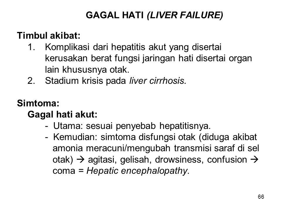 66 GAGAL HATI (LIVER FAILURE) Timbul akibat: 1.Komplikasi dari hepatitis akut yang disertai kerusakan berat fungsi jaringan hati disertai organ lain k