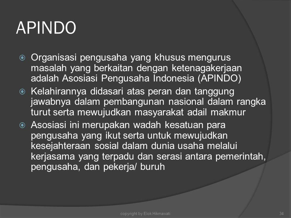 APINDO  Organisasi pengusaha yang khusus mengurus masalah yang berkaitan dengan ketenagakerjaan adalah Asosiasi Pengusaha Indonesia (APINDO)  Kelahi