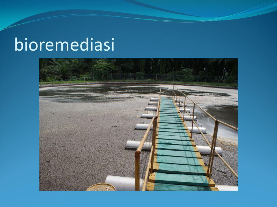 Bioreactors.Reaktor slurry atau encer digunakan untuk memperlakukan tanah dan air terkontaminan.