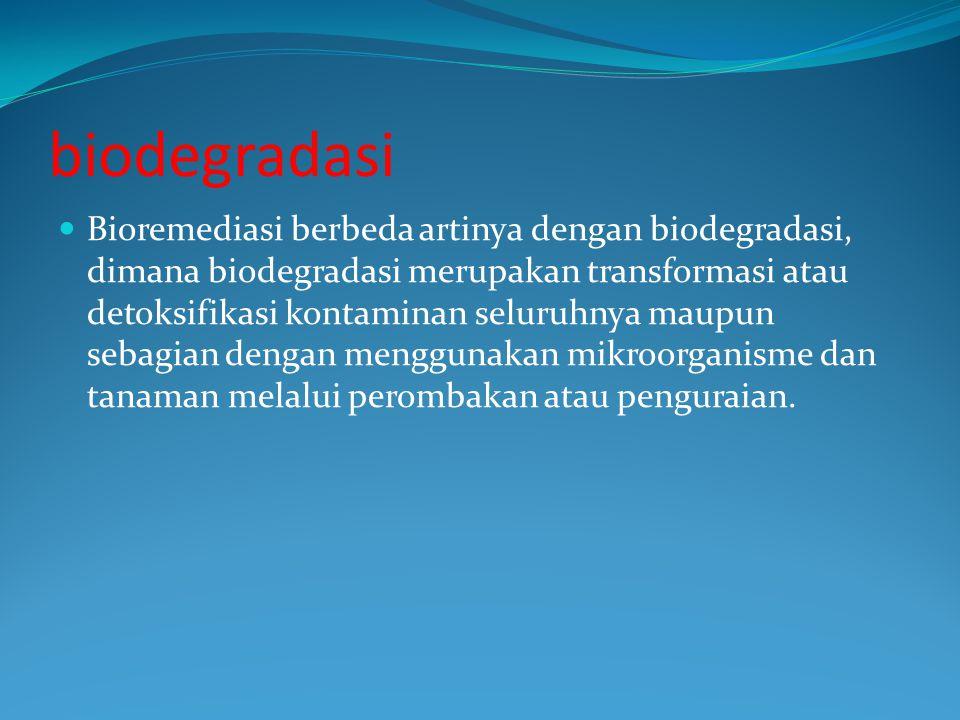 biodegradasi Bioremediasi berbeda artinya dengan biodegradasi, dimana biodegradasi merupakan transformasi atau detoksifikasi kontaminan seluruhnya maupun sebagian dengan menggunakan mikroorganisme dan tanaman melalui perombakan atau penguraian.
