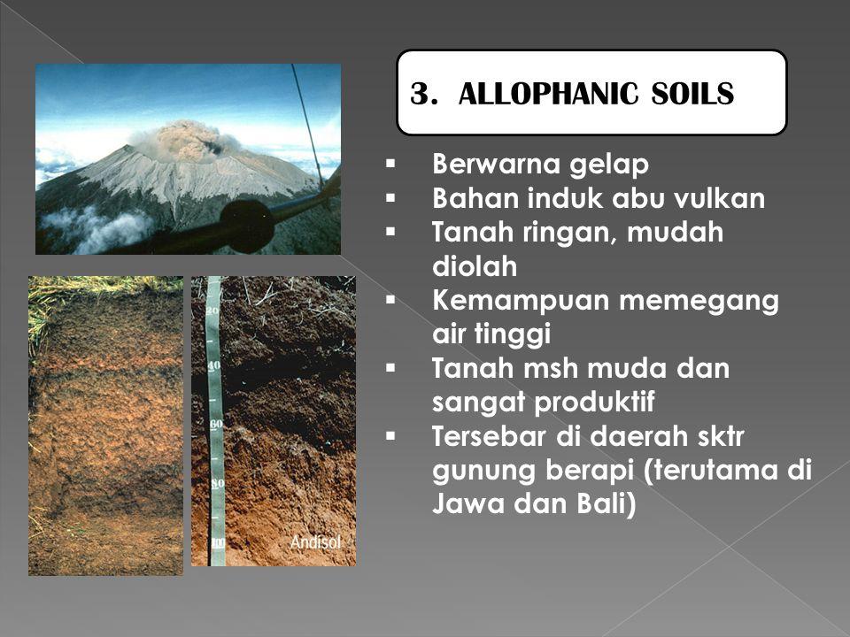  Berwarna gelap  Bahan induk abu vulkan  Tanah ringan, mudah diolah  Kemampuan memegang air tinggi  Tanah msh muda dan sangat produktif  Tersebar di daerah sktr gunung berapi (terutama di Jawa dan Bali) 3.