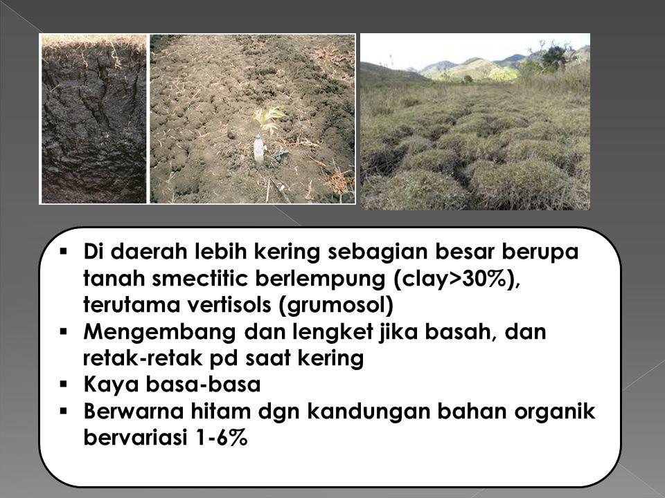  Di daerah lebih kering sebagian besar berupa tanah smectitic berlempung (clay>30%), terutama vertisols (grumosol)  Mengembang dan lengket jika basah, dan retak-retak pd saat kering  Kaya basa-basa  Berwarna hitam dgn kandungan bahan organik bervariasi 1-6%