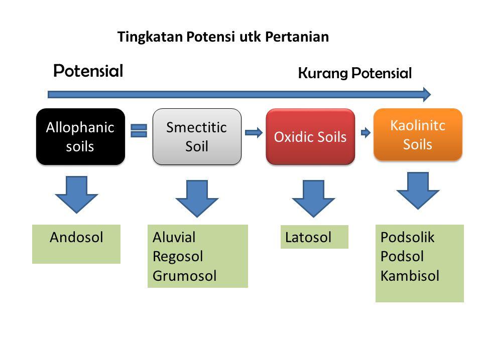 Allophanic soils Oxidic Soils Kaolinitc Soils Potensial Kurang Potensial AndosolPodsolik Podsol Kambisol Smectitic Soil Aluvial Regosol Grumosol Latosol Tingkatan Potensi utk Pertanian