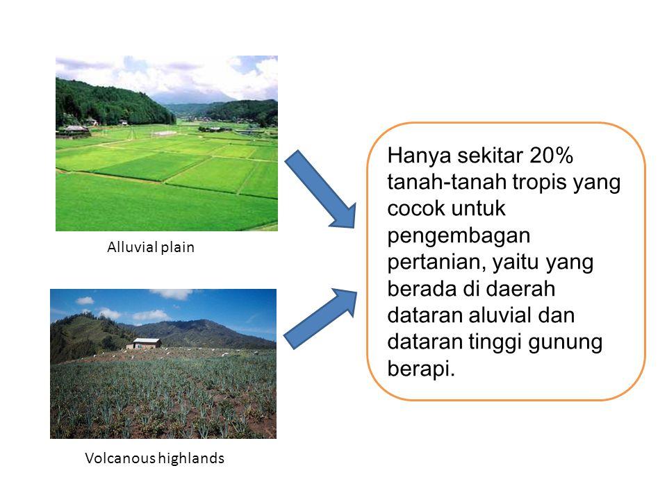 Alluvial plain Volcanous highlands Hanya sekitar 20% tanah-tanah tropis yang cocok untuk pengembagan pertanian, yaitu yang berada di daerah dataran aluvial dan dataran tinggi gunung berapi.