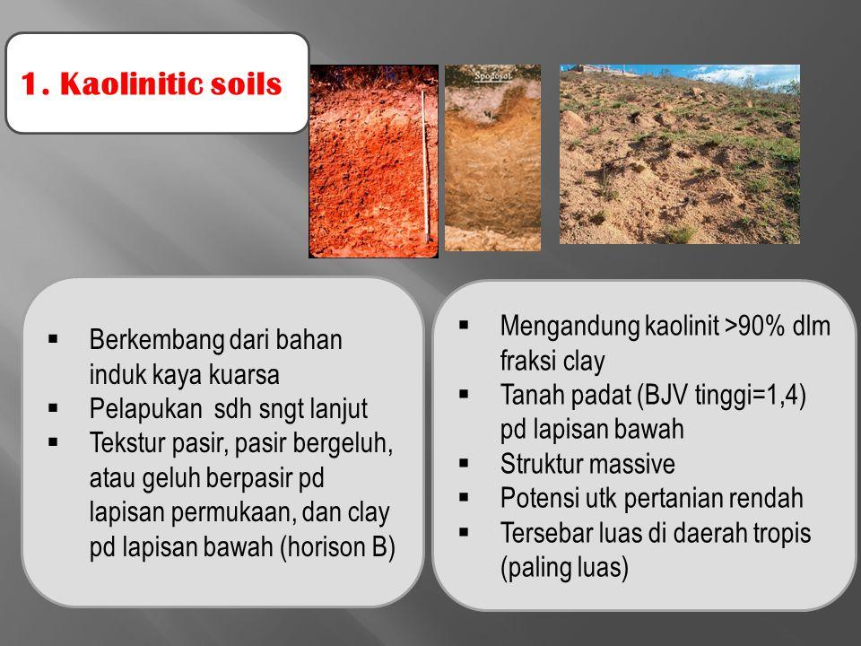 1. Kaolinitic soils  Berkembang dari bahan induk kaya kuarsa  Pelapukan sdh sngt lanjut  Tekstur pasir, pasir bergeluh, atau geluh berpasir pd lapi