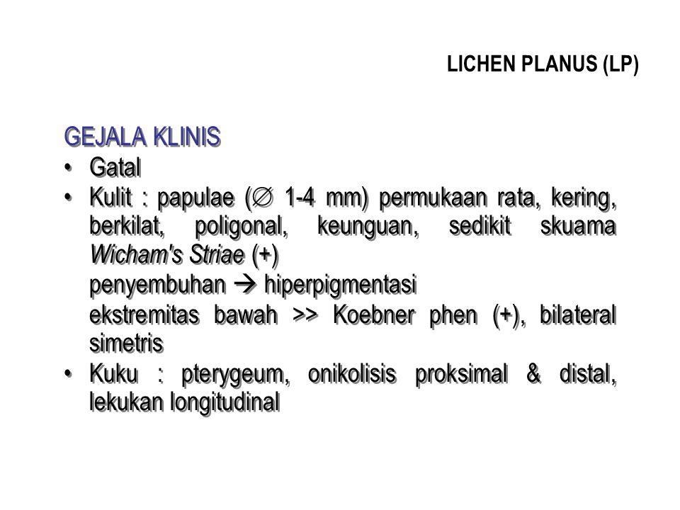 LICHEN PLANUS (LP) GEJALA KLINIS Gatal Kulit : papulae (  1-4 mm) permukaan rata, kering, berkilat, poligonal, keunguan, sedikit skuama Wicham's Stri