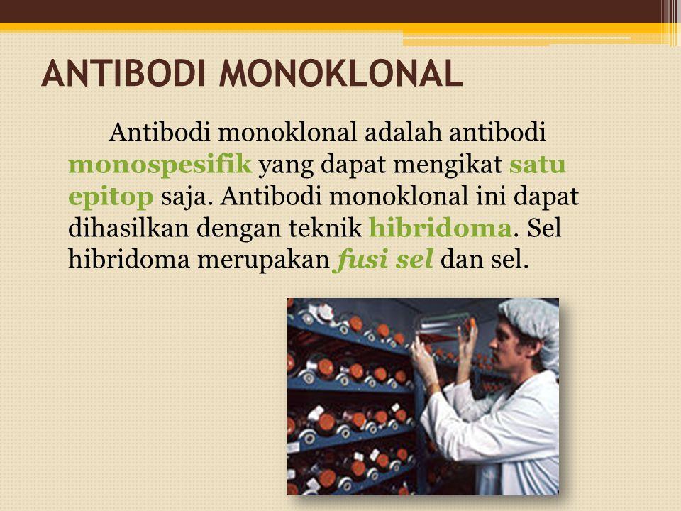 ANTIBODI MONOKLONAL Antibodi monoklonal adalah antibodi monospesifik yang dapat mengikat satu epitop saja. Antibodi monoklonal ini dapat dihasilkan de