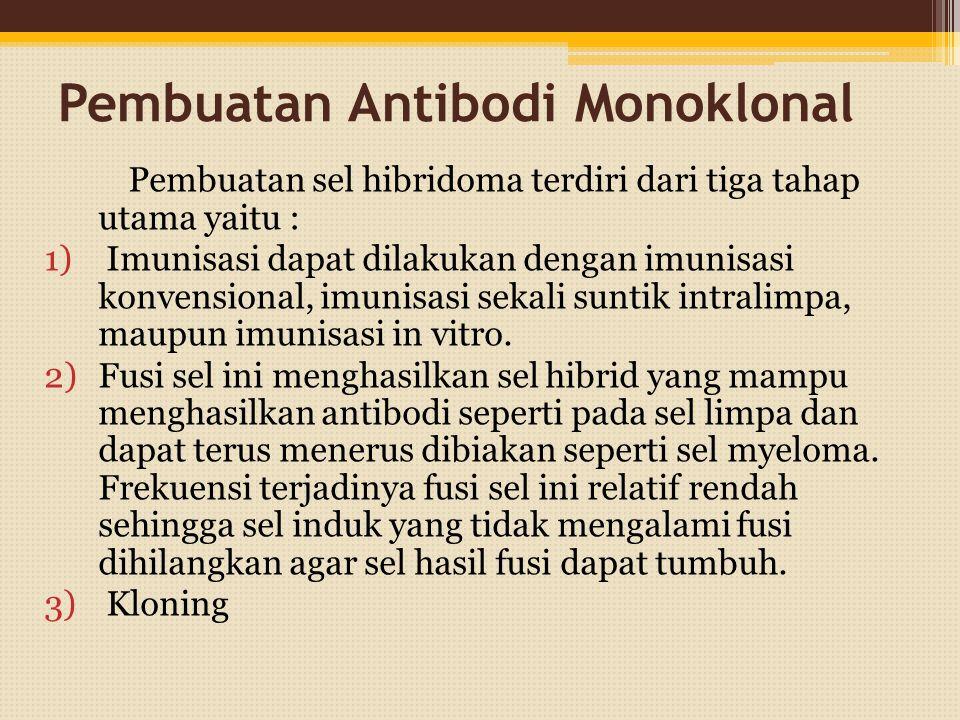 Pembuatan Antibodi Monoklonal Pembuatan sel hibridoma terdiri dari tiga tahap utama yaitu : 1) Imunisasi dapat dilakukan dengan imunisasi konvensional