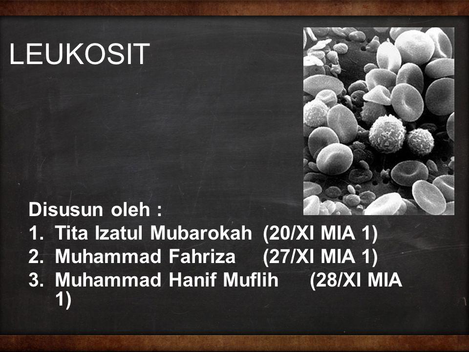 LEUKOSIT Disusun oleh : 1.Tita Izatul Mubarokah(20/XI MIA 1) 2.Muhammad Fahriza(27/XI MIA 1) 3.Muhammad Hanif Muflih(28/XI MIA 1)