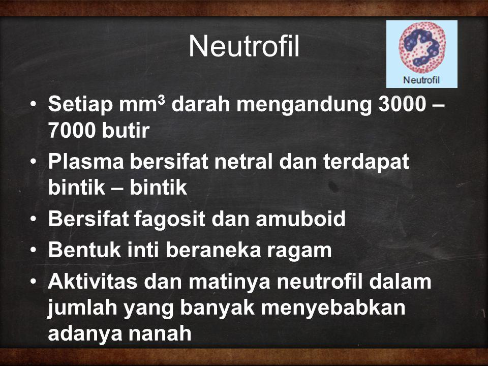 Neutrofil Setiap mm 3 darah mengandung 3000 – 7000 butir Plasma bersifat netral dan terdapat bintik – bintik Bersifat fagosit dan amuboid Bentuk inti beraneka ragam Aktivitas dan matinya neutrofil dalam jumlah yang banyak menyebabkan adanya nanah