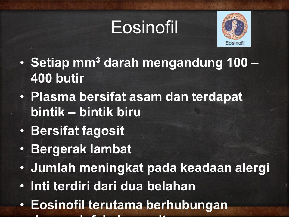 Eosinofil Setiap mm 3 darah mengandung 100 – 400 butir Plasma bersifat asam dan terdapat bintik – bintik biru Bersifat fagosit Bergerak lambat Jumlah meningkat pada keadaan alergi Inti terdiri dari dua belahan Eosinofil terutama berhubungan dengan infeksi parasit