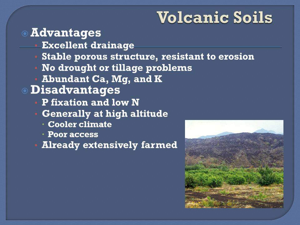  Advantages Excellent drainage Stable porous structure, resistant to erosion No drought or tillage problems Abundant Ca, Mg, and K  Disadvantages P fixation and low N Generally at high altitude  Cooler climate  Poor access Already extensively farmed