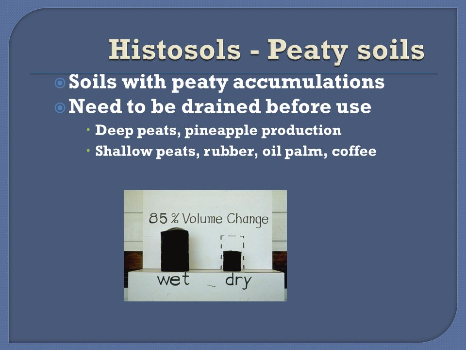  Soils with peaty accumulations  Need to be drained before use  Deep peats, pineapple production  Shallow peats, rubber, oil palm, coffee