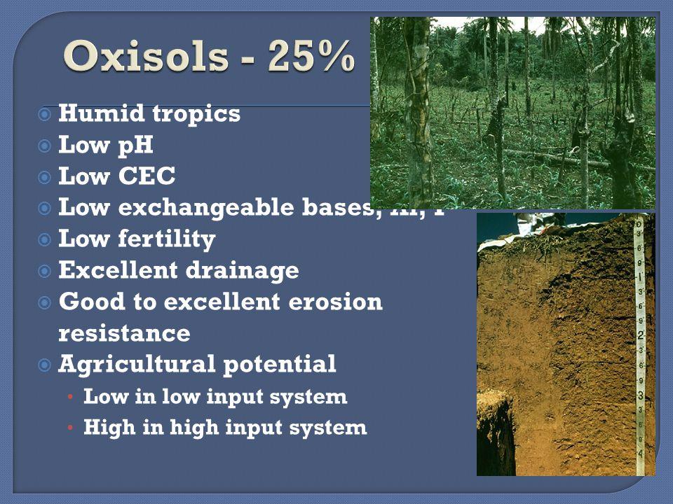 Pertanian lahan kering kini merupakan istilah yang sudah sangat umum digunakan, tetapi sebenarnya apakah pertanian lahan kering itu.
