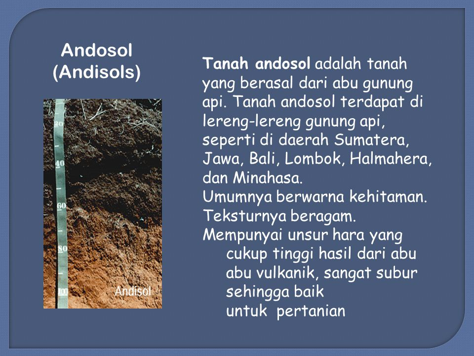 Andosol (Andisols) Tanah andosol adalah tanah yang berasal dari abu gunung api.