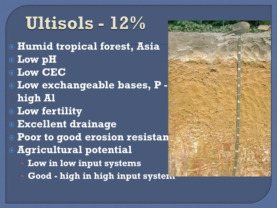  Humid tropical forest, Asia  Low pH  Low CEC  Low exchangeable bases, P - high Al  Low fertility  Excellent drainage  Poor to good erosion resistance  Agricultural potential Low in low input systems Good - high in high input system