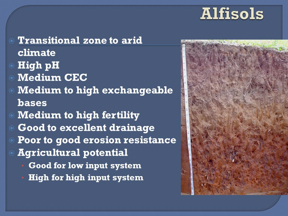  Alluvial, Volcanic, and other soils 23% Entisols and Inceptisols  Desert soils 20% Aridisols  Cracking soils 3% Vertisols  Peaty soils <1% Histosols