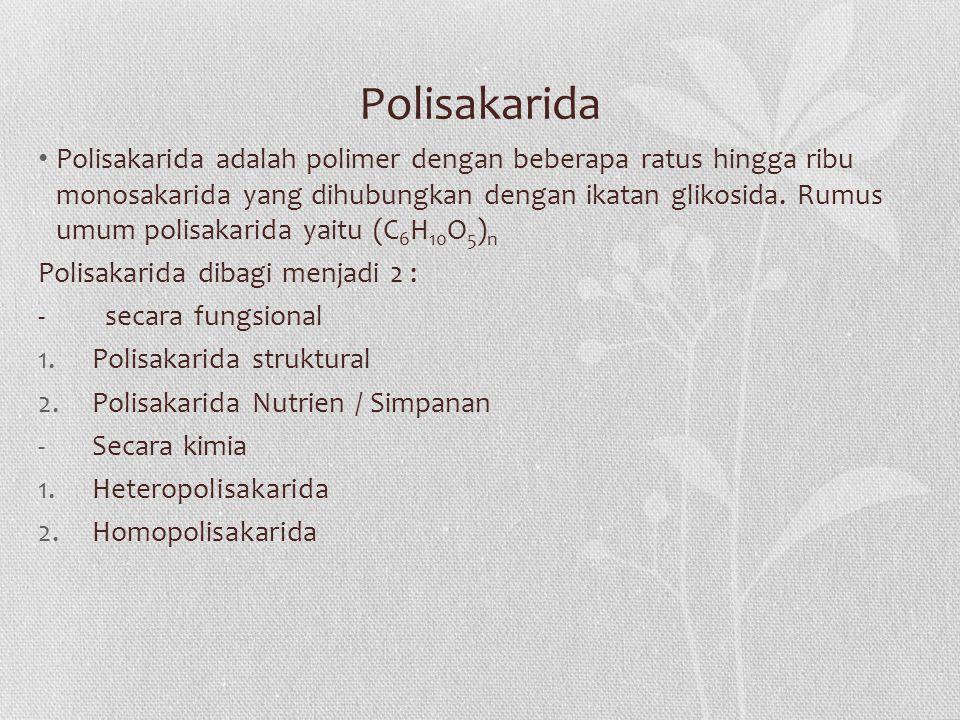 Polisakarida Polisakarida adalah polimer dengan beberapa ratus hingga ribu monosakarida yang dihubungkan dengan ikatan glikosida.
