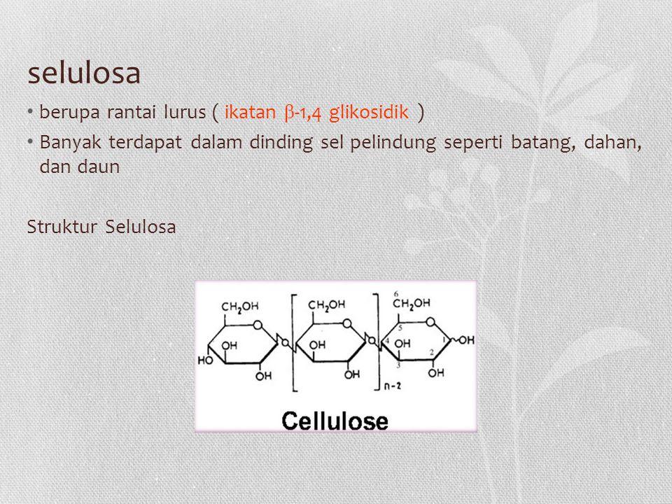 selulosa berupa rantai lurus ( ikatan β -1,4 glikosidik ) Banyak terdapat dalam dinding sel pelindung seperti batang, dahan, dan daun Struktur Selulosa