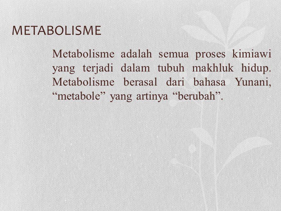 METABOLISME Metabolisme adalah semua proses kimiawi yang terjadi dalam tubuh makhluk hidup.