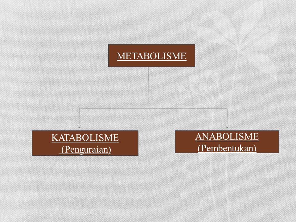 METABOLISME KATABOLISME (Penguraian) ANABOLISME (Pembentukan)