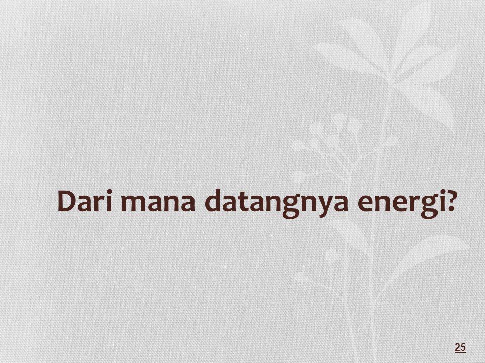 Dari mana datangnya energi? 25