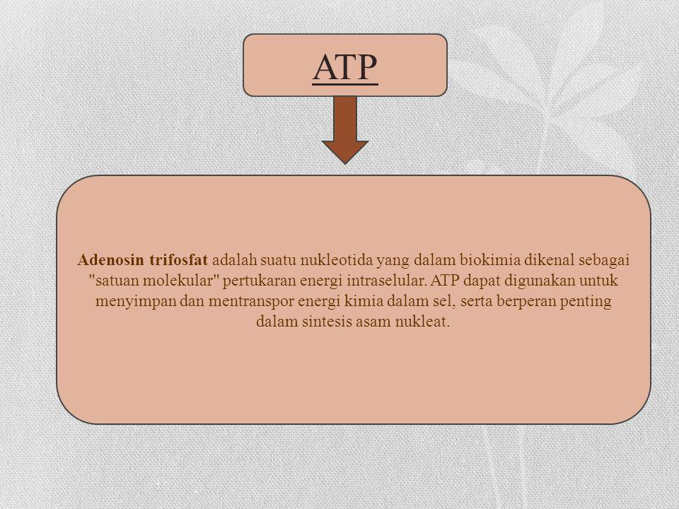 Adenosin trifosfat adalah suatu nukleotida yang dalam biokimia dikenal sebagai satuan molekular pertukaran energi intraselular.