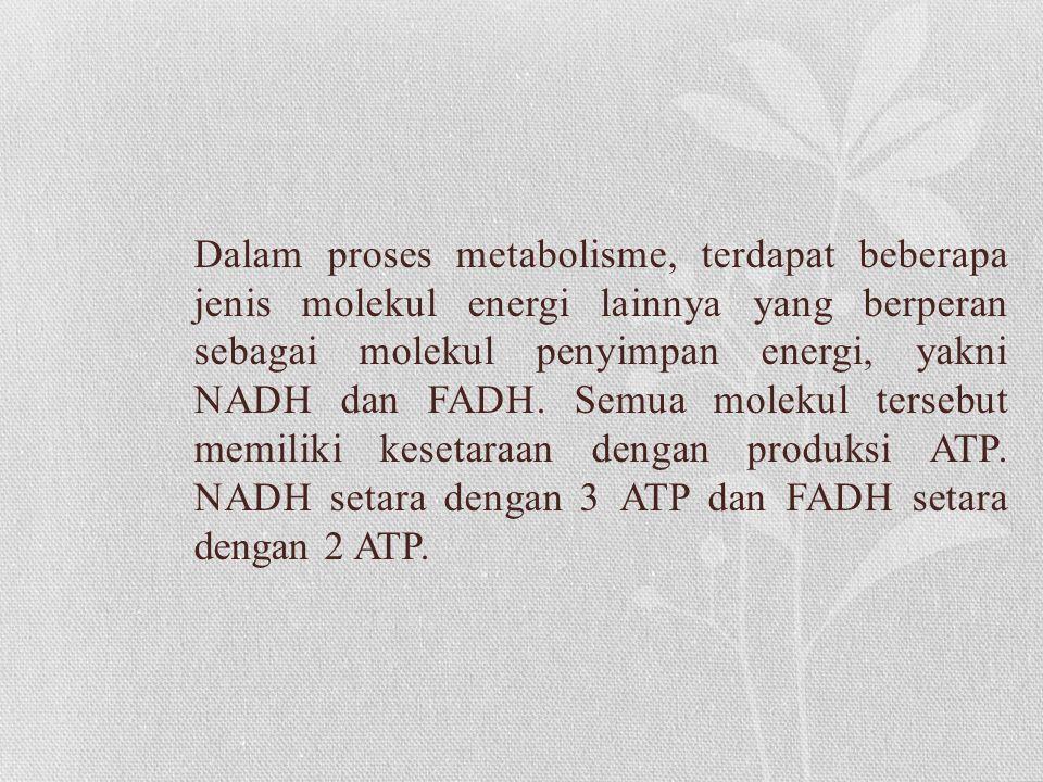 Dalam proses metabolisme, terdapat beberapa jenis molekul energi lainnya yang berperan sebagai molekul penyimpan energi, yakni NADH dan FADH.