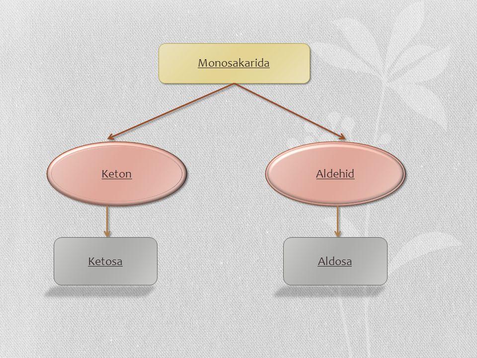 Monosakarida Keton Aldehid KetosaAldosa