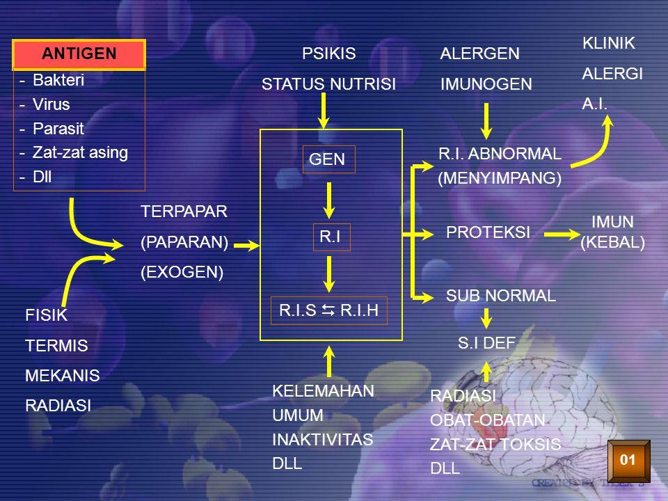 33 ANTIGEN -Bakteri -Virus -Parasit -Zat-zat asing -Dll TERPAPAR (PAPARAN) (EXOGEN) FISIK TERMIS MEKANIS RADIASI PSIKIS STATUS NUTRISI R.I.S  R.I.H K