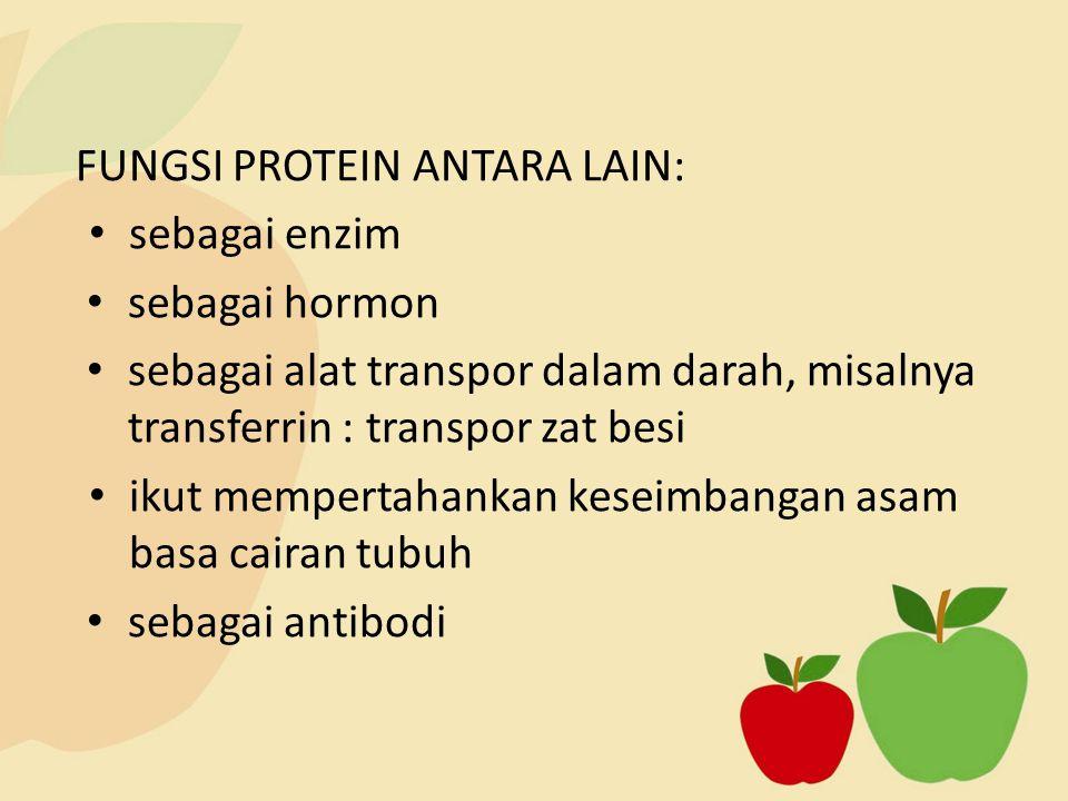FUNGSI PROTEIN ANTARA LAIN: sebagai enzim sebagai hormon sebagai alat transpor dalam darah, misalnya transferrin : transpor zat besi ikut mempertahankan keseimbangan asam basa cairan tubuh sebagai antibodi