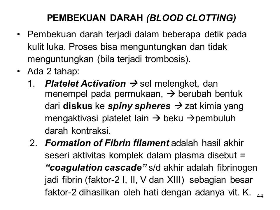 44 PEMBEKUAN DARAH (BLOOD CLOTTING) Pembekuan darah terjadi dalam beberapa detik pada kulit luka. Proses bisa menguntungkan dan tidak menguntungkan (b