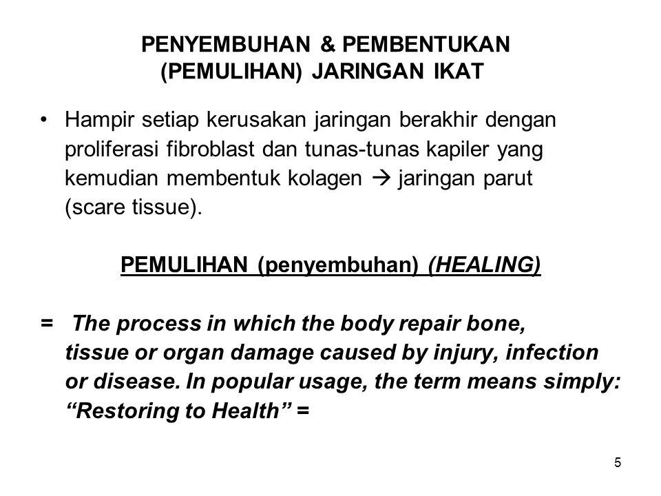 6 PENYEMBUHAN & PEMBENTUKAN (PEMULIHAN) JARINGAN IKAT (Lanjutan-1) Pada stadium pertama penyembuhan, proses yang terjadi sama di semua bagian tempat tubuh.