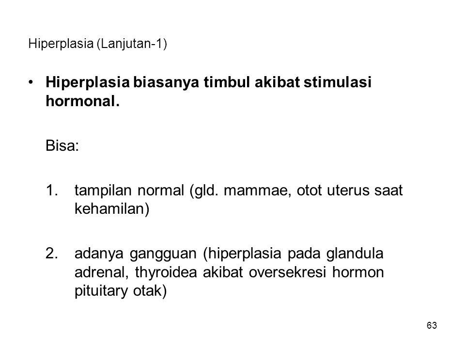 63 Hiperplasia (Lanjutan-1) Hiperplasia biasanya timbul akibat stimulasi hormonal. Bisa: 1.tampilan normal (gld. mammae, otot uterus saat kehamilan) 2