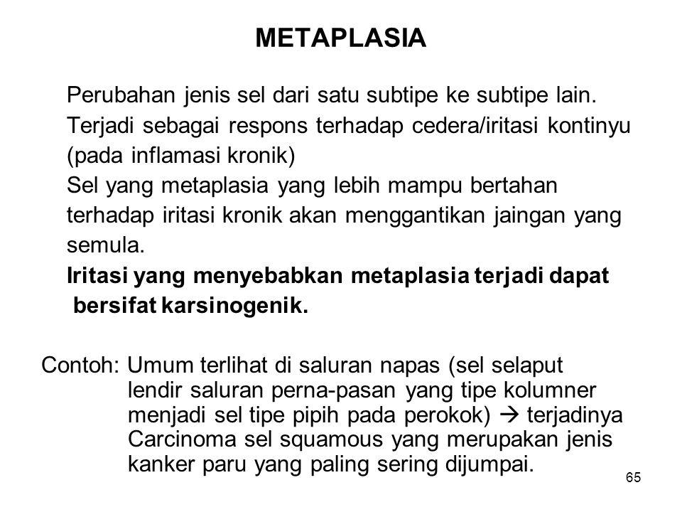 65 METAPLASIA Perubahan jenis sel dari satu subtipe ke subtipe lain. Terjadi sebagai respons terhadap cedera/iritasi kontinyu (pada inflamasi kronik)