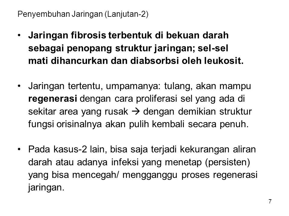 7 Penyembuhan Jaringan (Lanjutan-2) Jaringan fibrosis terbentuk di bekuan darah sebagai penopang struktur jaringan; sel-sel mati dihancurkan dan diabs