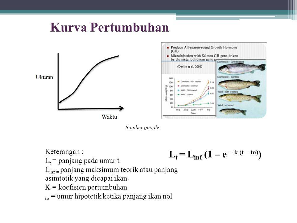 Keterangan : L t = panjang pada umur t L inf = panjang maksimum teorik atau panjang asimtotik yang dicapai ikan K = koefisien pertumbuhan to = umur hipotetik ketika panjang ikan nol L t = L inf (1 – e – k (t – to) ) Kurva Pertumbuhan Sumber google