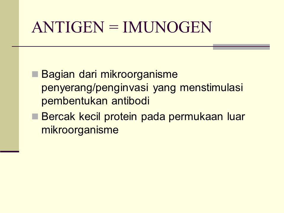 ANTIGEN = IMUNOGEN Bagian dari mikroorganisme penyerang/penginvasi yang menstimulasi pembentukan antibodi Bercak kecil protein pada permukaan luar mik
